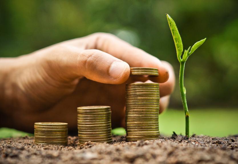 El ROI de las inversiones financieras en medio ambiente