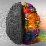 Psicología empresarial: el círculo de oro de Sinek