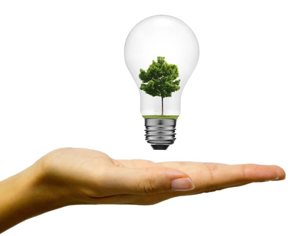 negocio ecologico